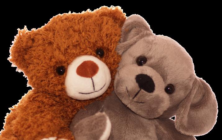 Promotion Teddy und Hund kuscheln